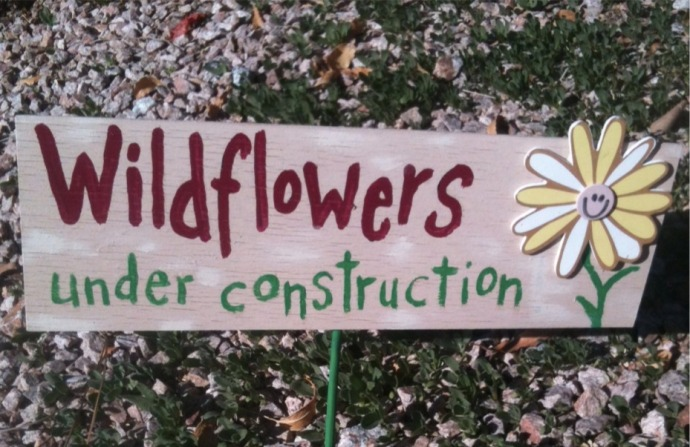 wildflowers under construction