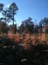 On a hike on the Rim northeast of Phoenix.