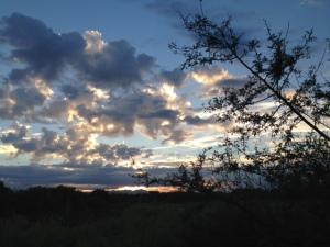 One of a hundred sunrises I enjoyed.