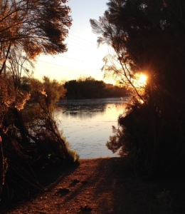 Yesterday's sunset at the Riparian.